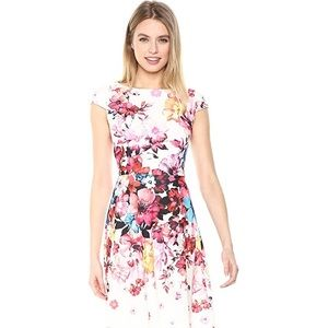 Adrianna Papell  Women's Spring in Bloom Printed